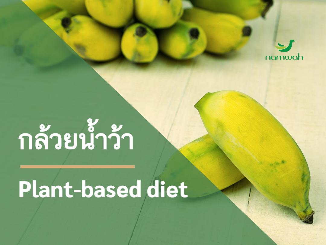 ผงกล้วยน้ำว้าดิบ ตราน้ำว้า Plant based