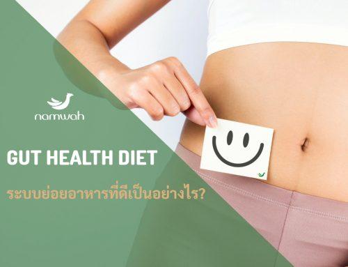 ระบบย่อยอาหารที่ดีเป็นอย่างไร (GUT HEALTH DIET)